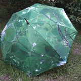 Regenschirm mit DFV-Logo